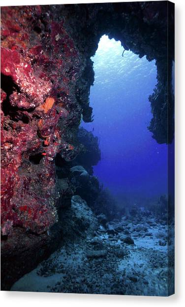 Underwater Caves Canvas Print - Underwater Cave by Raymond Jusseaume
