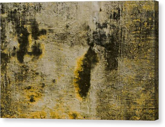 Abstract 66 Canvas Print