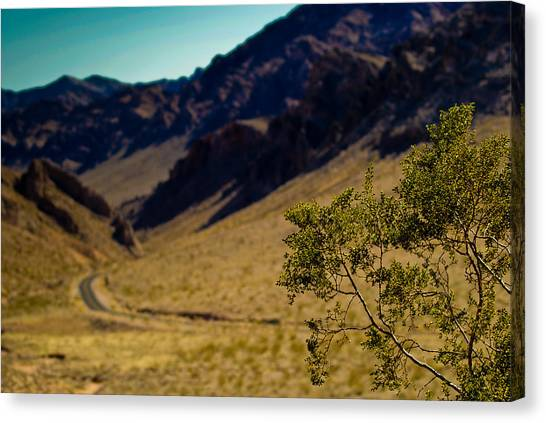 Valley Of Fire Nevada Canvas Print by Patrick  Flynn