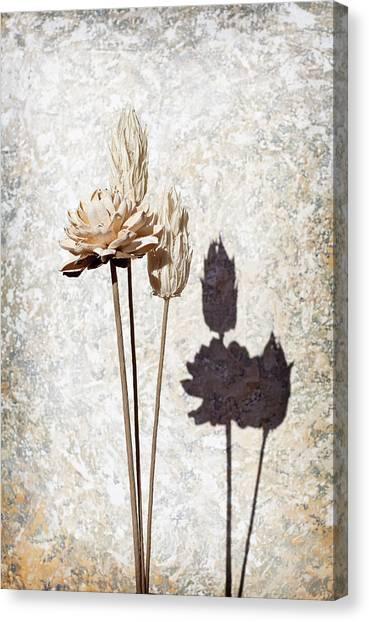 Vintage Floral 1 Canvas Print