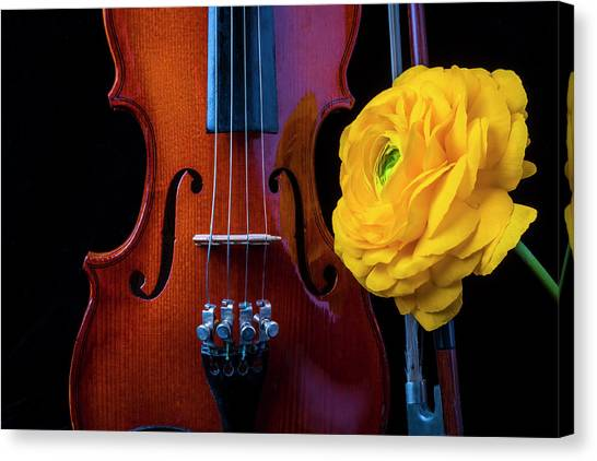 Fiddling Canvas Print - Violin And Ranunculus by Garry Gay