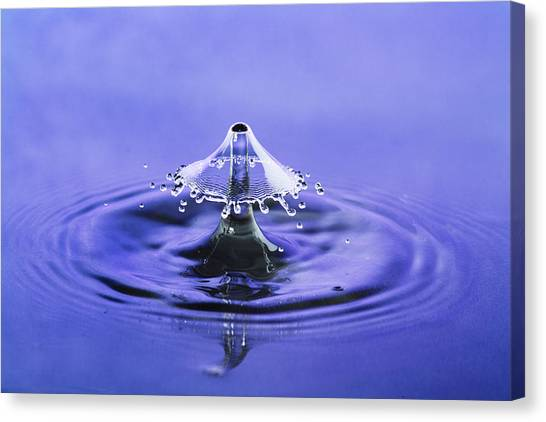 Water Drop Umbrella Canvas Print