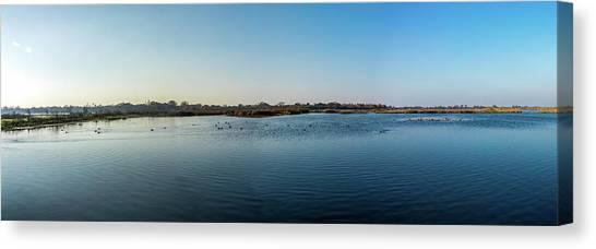 Wetlands Panorama  Canvas Print