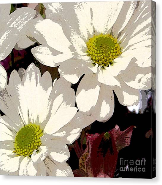 White Daisies Canvas Print by Marsha Young