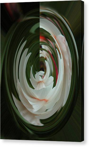 White Form Canvas Print