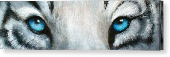 Bengals Canvas Print - Whos Watching Who...white Tiger by Darlene Green