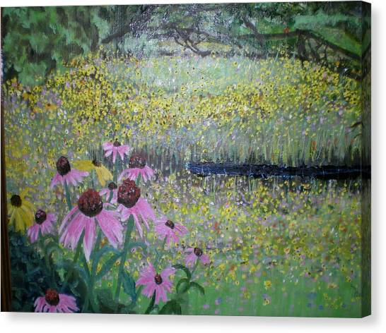 Wild Spring Flowers Canvas Print by Hal Newhouser