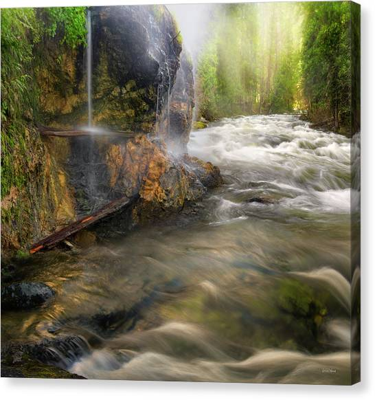Canvas Print featuring the photograph Wilderness Hot Springs by Leland D Howard