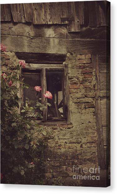 Sad Points Of View Canvas Print - Window by Mythja Photography