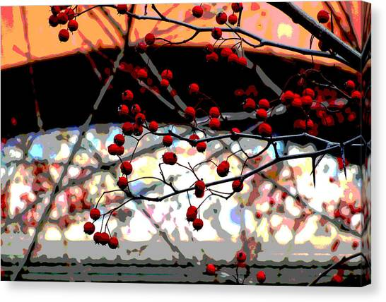 Window Series Canvas Print by Ginger Geftakys