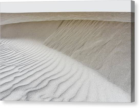 Canvas Print featuring the photograph Windswept by Jon Exley