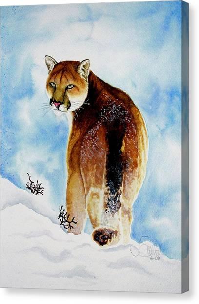 Winter Cougar Canvas Print