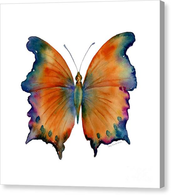 Orange Canvas Print - 1 Wizard Butterfly by Amy Kirkpatrick