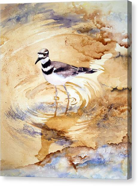 Yellowstone Killdeer Canvas Print