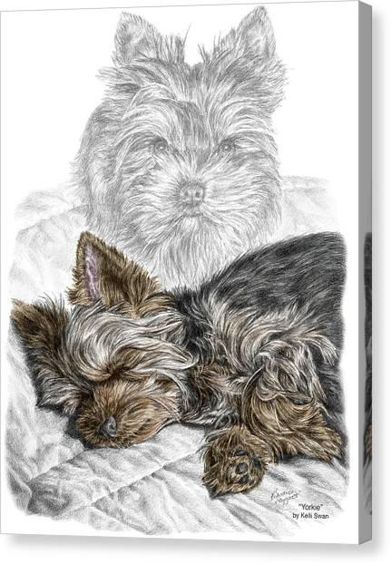 Yorkie - Yorkshire Terrier Dog Print Canvas Print
