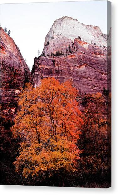 Canvas Print featuring the photograph Zion National Park by Norman Hall