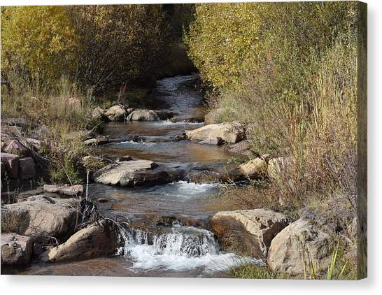 Waterfall Westcliffe Co Canvas Print