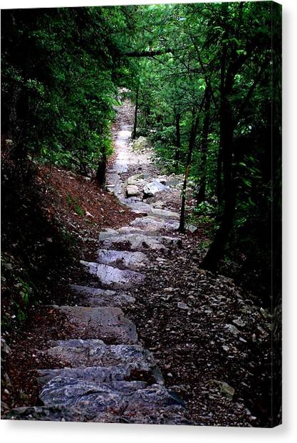 1000 Steps In Mifflin Co Pa Canvas Print by Jeanette Oberholtzer