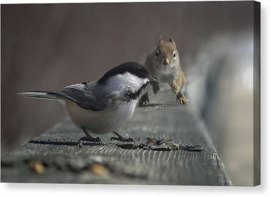 Titmice Canvas Print - Other by Super Lovely