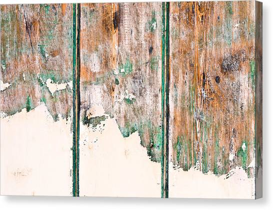 Upcycled Canvas Print - Green Wood by Tom Gowanlock