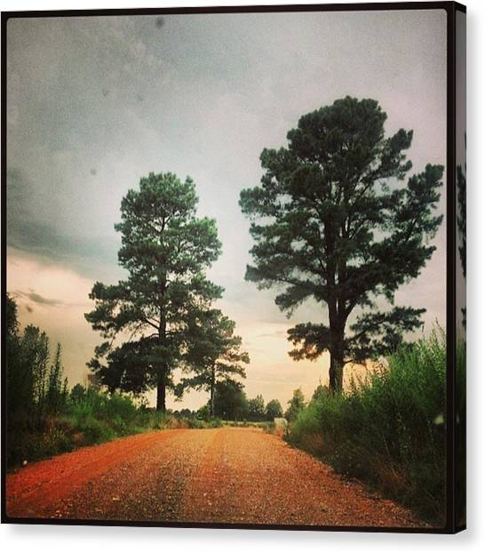 Dirt Road Canvas Print - Dirtroad by Haley Marie Theoboldt