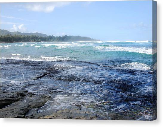 Hawaii Canvas Print by Thea Wolff