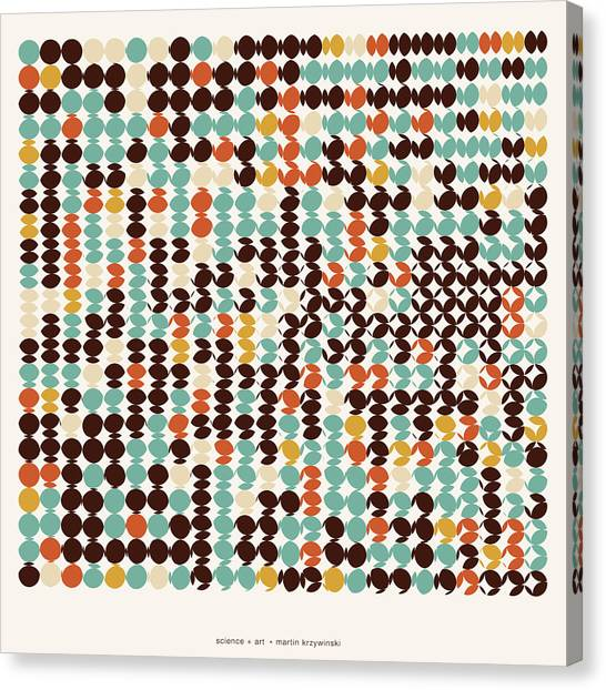 Warped Canvas Print - Pi Approximate Packing Of Circles by Martin Krzywinski