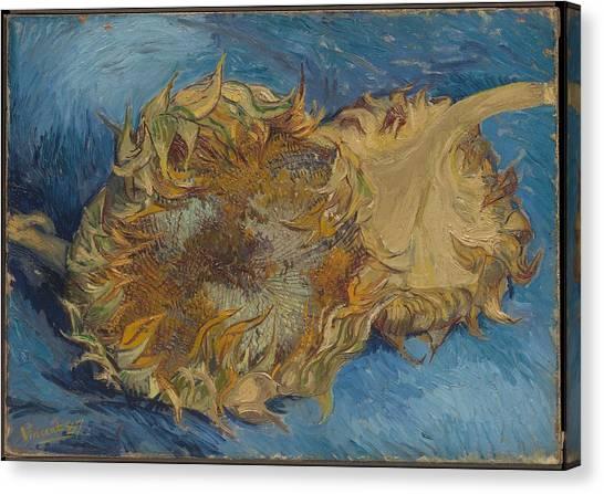 Vincent Van Gogh Canvas Print - Sunflowers by Vincent Van Gogh