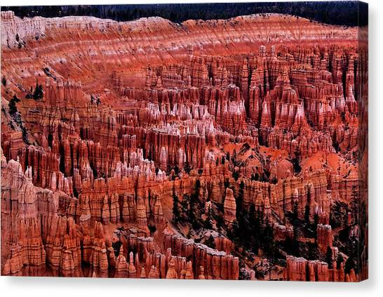 Bryce Canyon N.p. Canvas Print by Larry Gohl