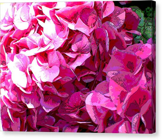 Nature Series Canvas Print by Ginger Geftakys