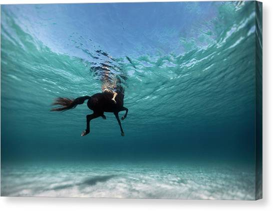 Ocean Canvas Print - 131016-8962 by 27mm