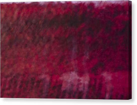 Color Field 5 Canvas Print