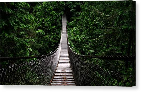 Forest Paths Canvas Print - Bridge by Jackie Russo
