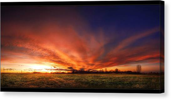 Sunrise Horizon Canvas Print - Field by Mariel Mcmeeking