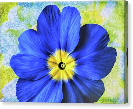 Blue Primrose Canvas Print