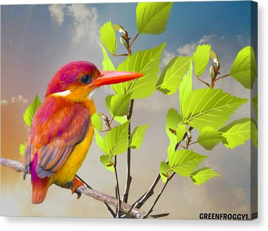 Macaws Canvas Print - Animal by Super Lovely