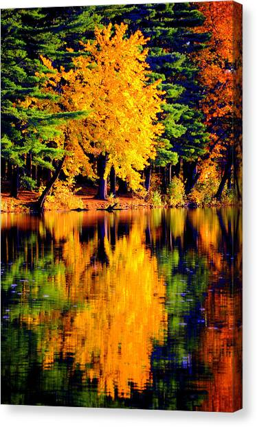 Autumn Colors Canvas Print by Aron Chervin
