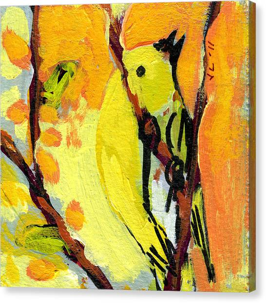 Sparrows Canvas Print - 16 Birds No 1 by Jennifer Lommers