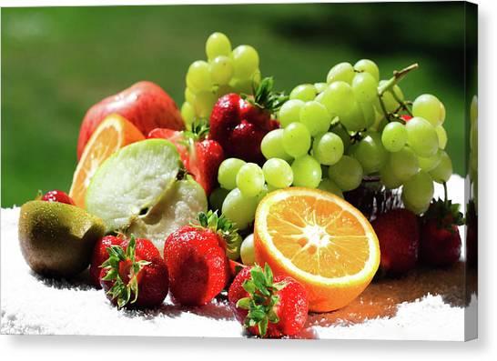 Kiwis Canvas Print - Fruit by Mariel Mcmeeking