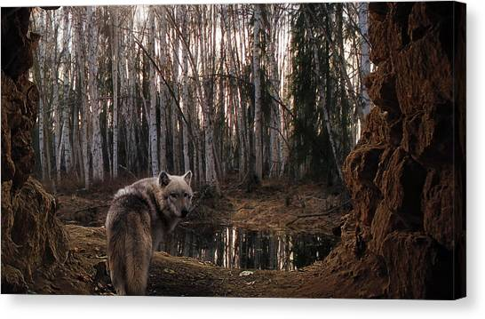 Kangaroo Canvas Print - Wolf by Mariel Mcmeeking
