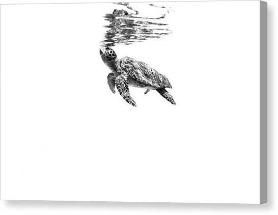 Ocean Canvas Print - 160526-5803 by 27mm