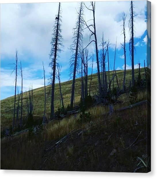 Rocky Mountains Canvas Print - A Year After by Jonathan Stoops