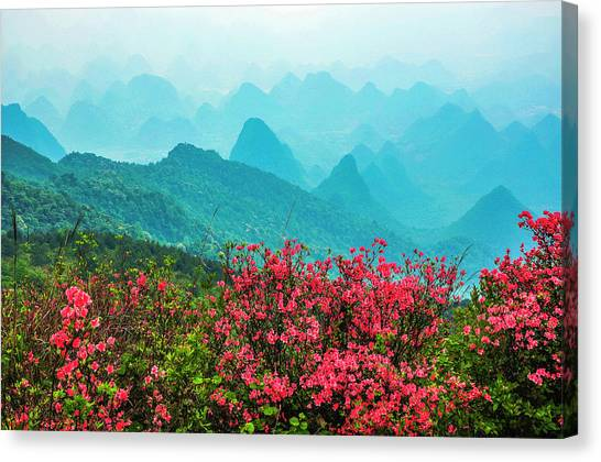 Blossoming Azalea And Mountain Scenery Canvas Print
