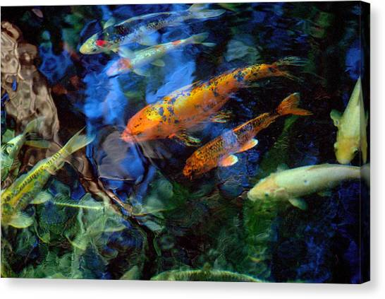 The Koi Pond Canvas Print by Marc Bittan