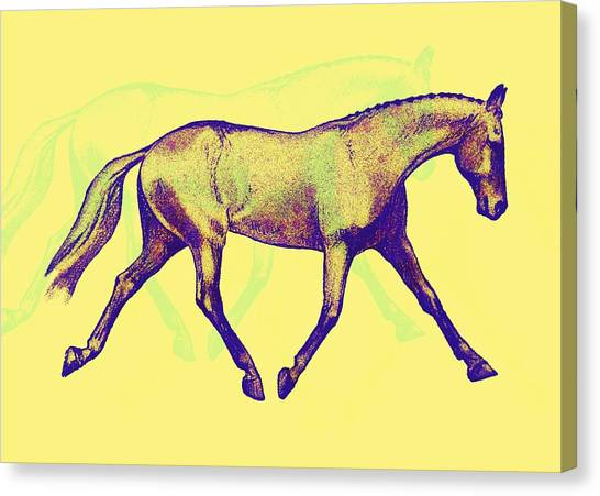 Lengthen Trot Deco Art Canvas Print by JAMART Photography