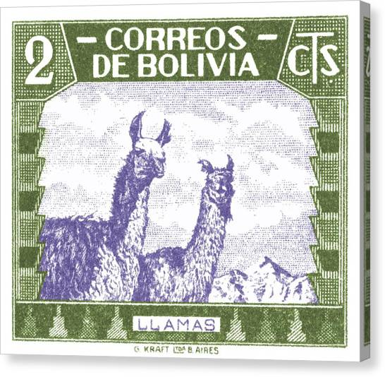 Bolivian Canvas Print - 1939 Bolivia Llamas Postage Stamp by Retro Graphics