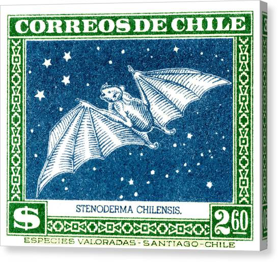 Chilean Canvas Print - 1948 Chile Red Fruit Bat Postage Stamp by Retro Graphics