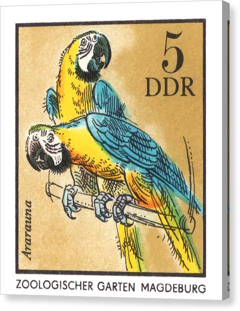 Macaws Canvas Print - 1975 East Germany Zoo Macaws Postage Stamp by Retro Graphics