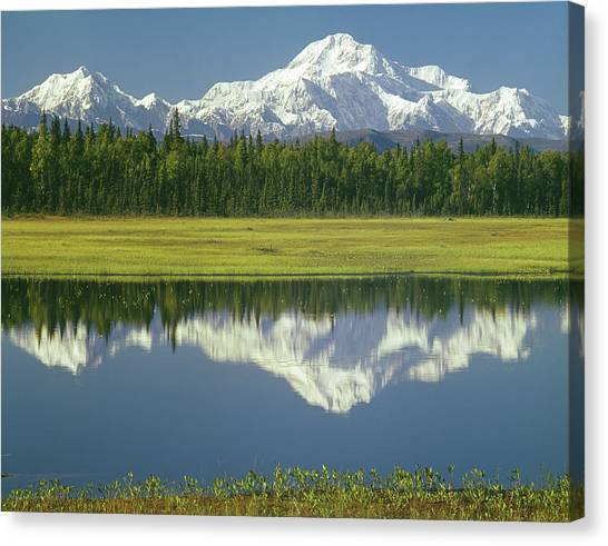 1m1325 Mt. Hunter And Mt. Denali Canvas Print