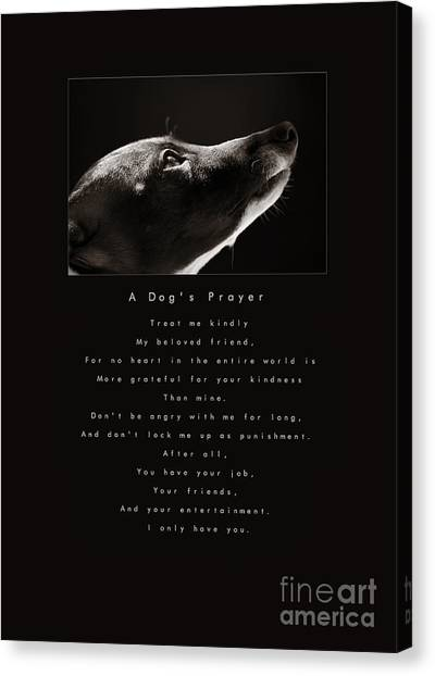 Sight Hound Canvas Print - A Dog's Prayer  A Popular Inspirational Portrait And Poem Featuring An Italian Greyhound Rescue by Angela Rath